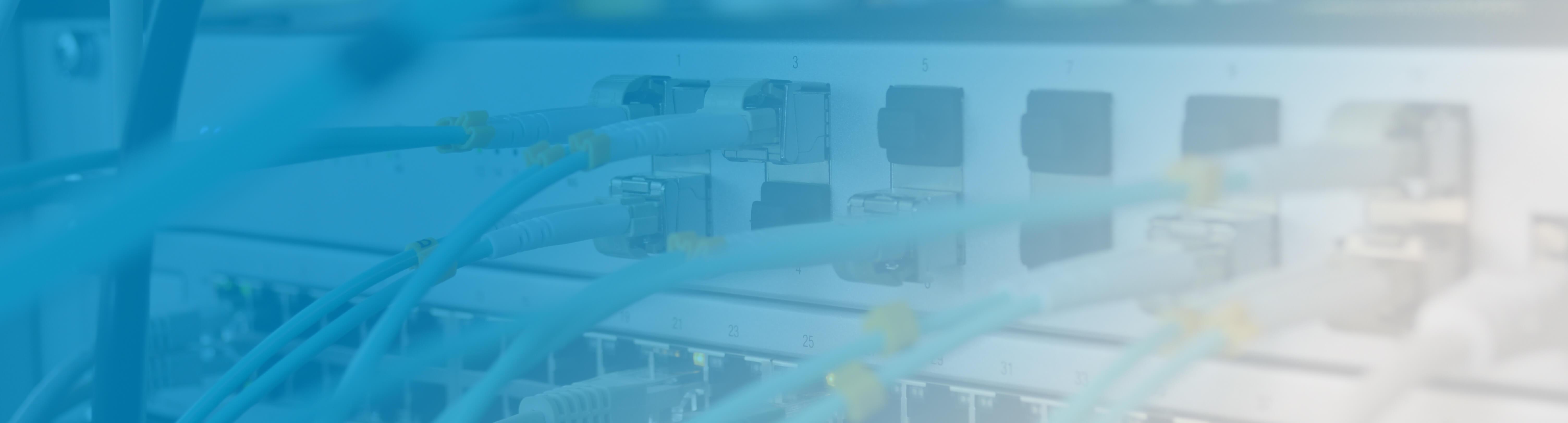 Wat zijn de verschillen tussen een netwerk switch en een router?